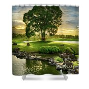 Morning Tree Shower Curtain