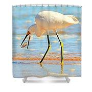 Morning Walk 2 Shower Curtain