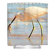 Morning Walk 1 Shower Curtain