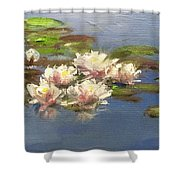 Morning Water Lilies Shower Curtain