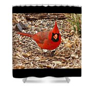 Morning Welcome Shower Curtain