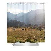 Morraine Daze Shower Curtain