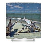 Morris Island Driftwood Shower Curtain