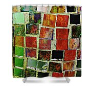 Mosaic 17 Shower Curtain
