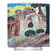 Mosaic Art At Petra Shower Curtain