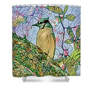 Mosaic Of Blue Jay Shower Curtain