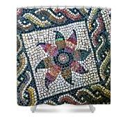 Mosaico Pavimentale Shower Curtain