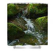 Mose On Rocks  Shower Curtain