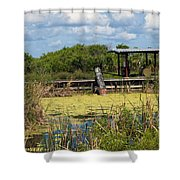 Mosquito Impoundement In Florida Shower Curtain