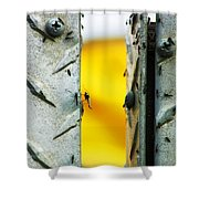 Mosquitos Shower Curtain