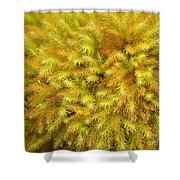 Moss Abstract Shower Curtain