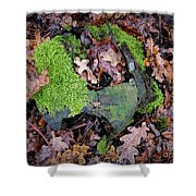 Moss And Leaves Shower Curtain