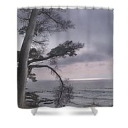Moss Beach Shower Curtain