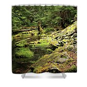 Moss By The Stream Shower Curtain
