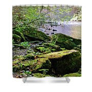 Moss Covered Boulders Shower Curtain