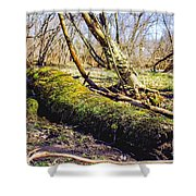 Moss Covered Log Shower Curtain