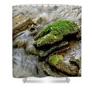 Moss Covered Rock Shower Curtain