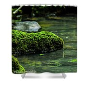Moss In A Spring Shower Curtain