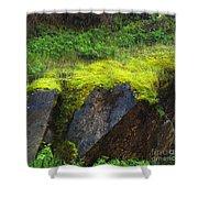 Moss On Rocks Shower Curtain