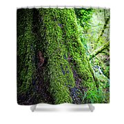 Moss On Tree Shower Curtain