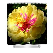Moss Rose Shower Curtain
