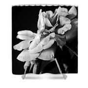 Moss Rose I Shower Curtain