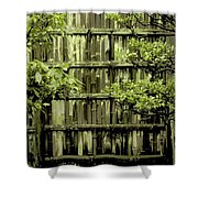 Mossy Bamboo Fence - Digital Art Shower Curtain