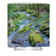 Mossy Blue Brook Shower Curtain