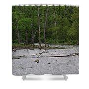 Mossy Bog Shower Curtain