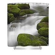 Mossy Boulders Shower Curtain