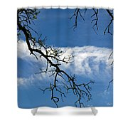 Mossy Branches Skyscape Shower Curtain