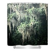 Mossy Dream Shower Curtain