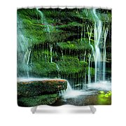 Mossy Falls - 2981 Shower Curtain