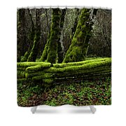 Mossy Fence 3 Shower Curtain