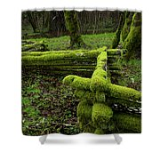 Mossy Fence 4 Shower Curtain