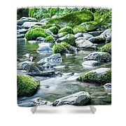 Mossy Forest Stream Shower Curtain