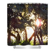 Mossy Glow Shower Curtain