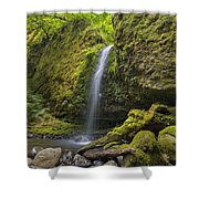 Mossy Grotto Falls In Summer Shower Curtain