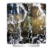 Mossy Pipes Shower Curtain