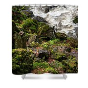 Mossy Rocks And Water Stream Shower Curtain