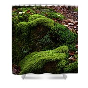 Mossy Rocks In Spring Woods Shower Curtain