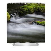Mossy Rocks  Oregon 1 Shower Curtain
