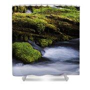 Mossy Rocks Oregon 3 Shower Curtain