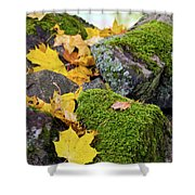 Mossy Stones And Maple Leaves Shower Curtain