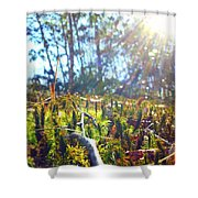 Mossy Sunburst Shower Curtain