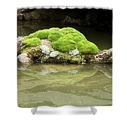 Mossy Turtle Rock Shower Curtain