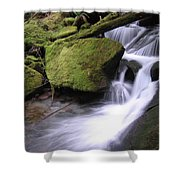 Mossy Waterfall Landscape Shower Curtain