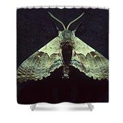 Moth At Texaco Station Shower Curtain