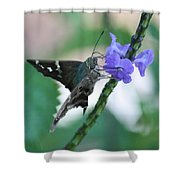 Moth On Blue Flower Shower Curtain