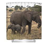 Mother And Baby Elephant Shower Curtain